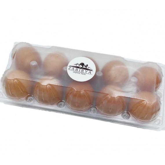 Яйця курячі органічні в пластиковому пакуванні, 10шт Zabirya organic farm